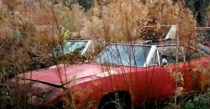 L'histoire incroyable de cette voiture abandonnée, son look a changé depuis!