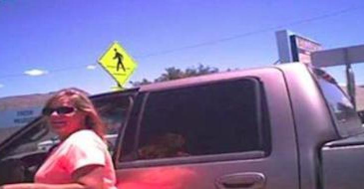Elle laisse son chien dans une chaleur suffocante dans sa voiture, mais le policier lui réserve toute une surprise! Bien fait pour elle!