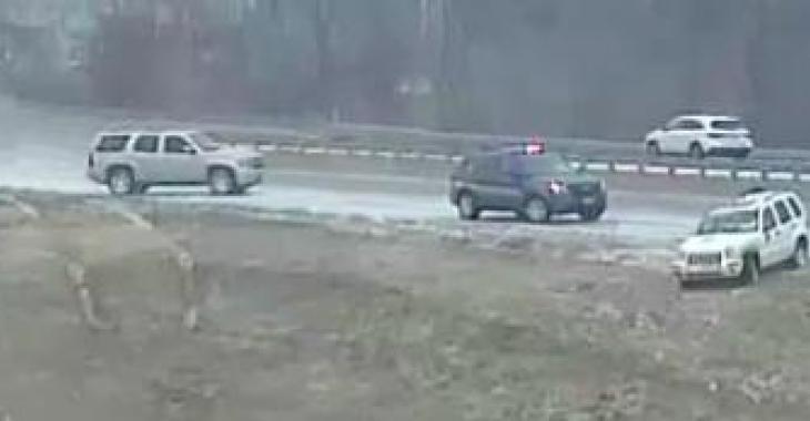 Ce conducteur perd la maîtrise de sa voiture, vous n'en reviendrez pas de voir où il termine sa course!