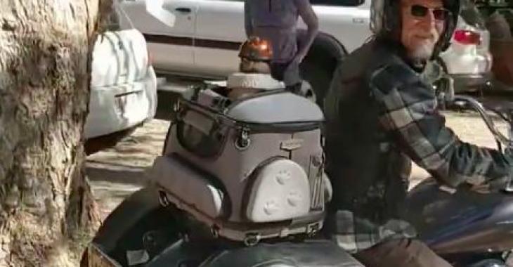 Il fait une place bien particulière pour son chien à bord de sa moto; l'idée est géniale!