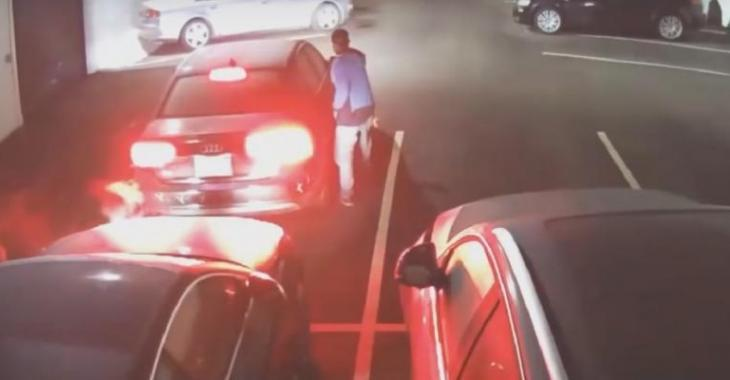 VIDÉO: Ces voleurs partent avec 7 Audi du concessionnaire!